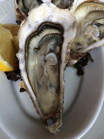 Restaurant le Coquillage : Oysters from the bay of Cancale - outstanding
