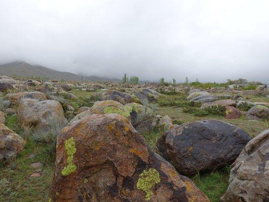 Cholpon Ata, Kirguistán: たくさんの岩があります。