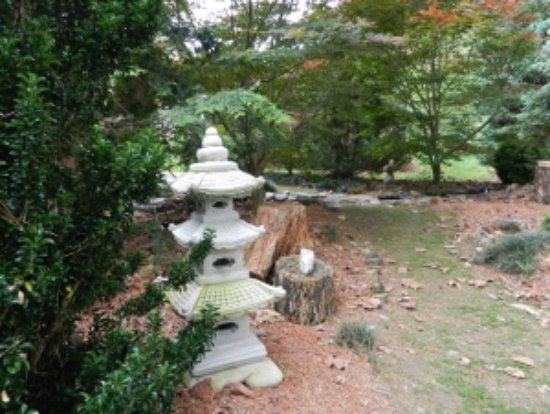 Luray, VA: The Bonsai Garden