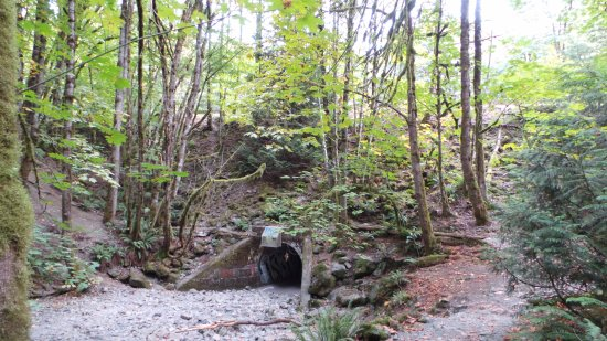 Langford, Canadá: tunnel that takes you to the trail for the waterfalls