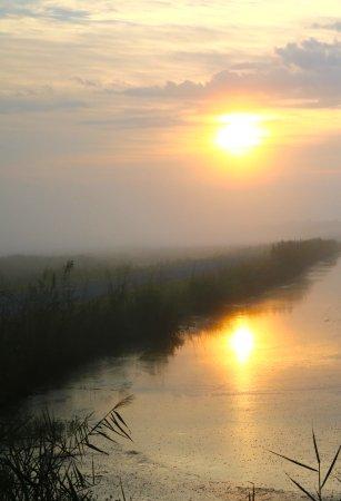 Manteo, North Carolina: Sunrise on the main MillTail road