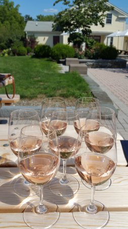 Ovid, Нью-Йорк: We bought a nicely chilled bottle of Sheldrake's Dry Rose and they gave glasses and a picnic tab