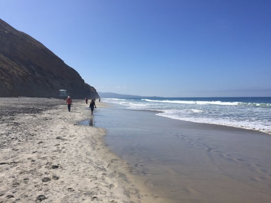 Torrey Pines State Natural Reserve: View from Torrey Pines Beach