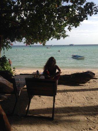 Big Fish Dive Resort : Giardino dell'hotel