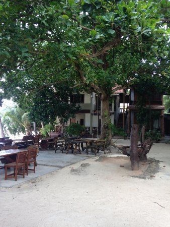 Big Fish Dive Resort : Giardino