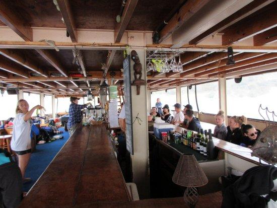 Paihia, New Zealand: Bar ist eröffnet