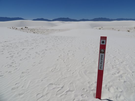 Alkali Flat Trail: The trail is marked with this red sticks. KEEP THEM IN SIGHT AT ALL TIMES!!