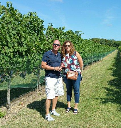 Willow Creek Winery: 20160917_114751-1_large.jpg