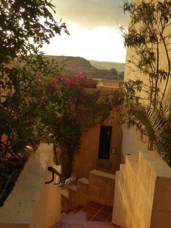 Cornucopia Hotel: View to bungalows
