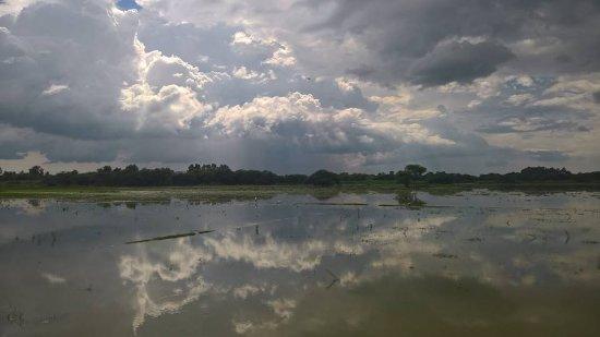 Kannauj, อินเดีย: Lakh Lake ... more like a wetland ... (Bahosi is larger & more ... lake-like :D