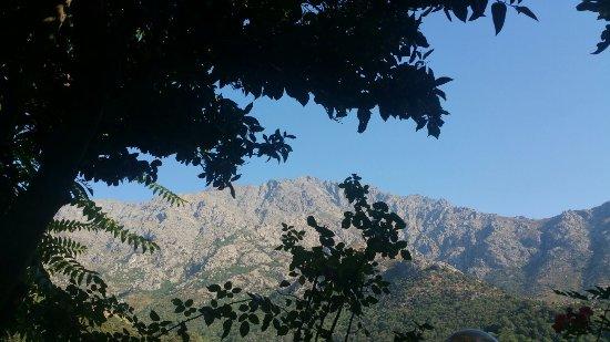 Zilia, Frankreich: Notre terrasse d été