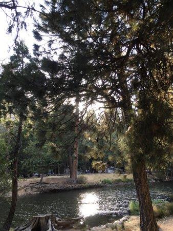 写真North Pines Campground枚
