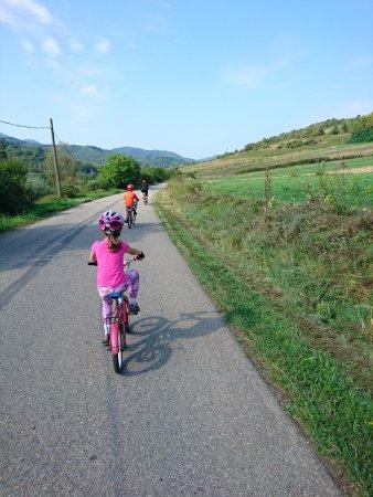 Vata de Jos, رومانيا: biking