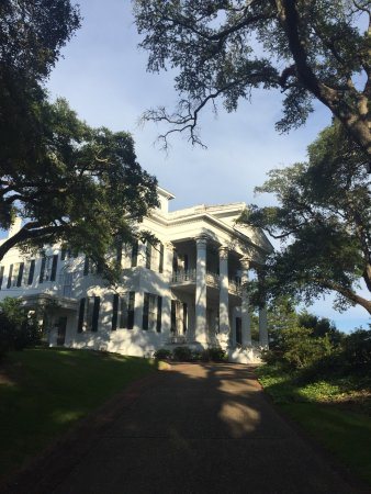 Natchez, MS: photo2.jpg