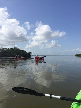A Day Away Kayak Tours : photo0.jpg