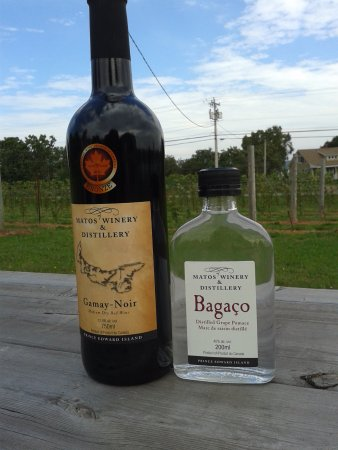 St. Catherines, Canada: Gamay-Noir and Bagaco