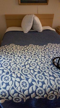 newer bedding