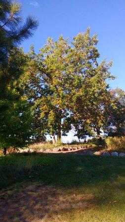 Summerland Ornamental Gardens