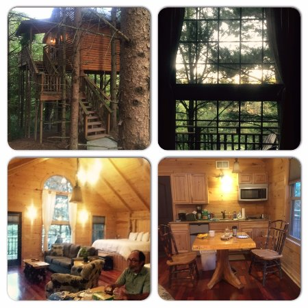 Millersburg, OH: Some shots of our treehouse stay