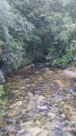 Te Anau Glowworm Caves: River out tot he lake