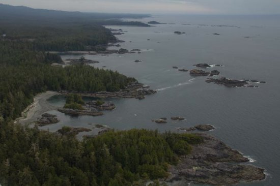 Air Nootka: Northern part of Escalante Point, Hesquiat Peninsula.