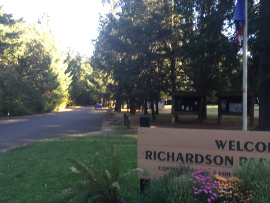 Junction City, OR: Amazing late summer Early Fall visit. Camp hosts amazing, good facilities our RV spot was great.