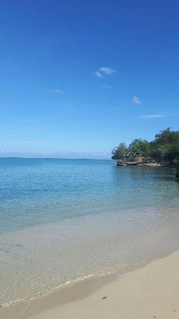 Paradise Island & The Mangroves (Cayo Arena): 20160916_092911_large.jpg