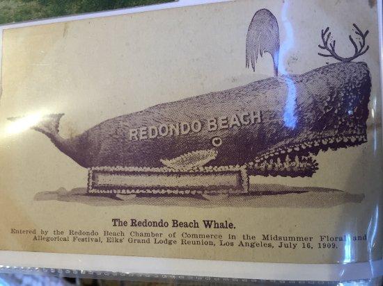 ดานาพอยต์, แคลิฟอร์เนีย: Tall Ship Festival Whale Display. This was part of an excellent private collection of whaling