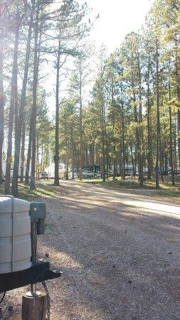 Big Pine Campground: TA_IMG_20160917_163227_large.jpg