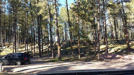 Big Pine Campground: TA_IMG_20160917_163300_large.jpg