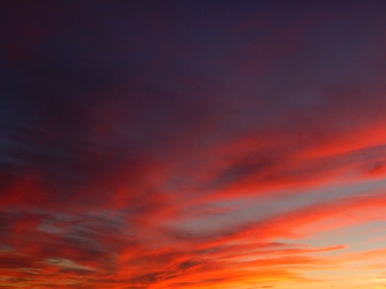 Cornelia Carey Sanctuary (The Knob): Pictures don't do it justice