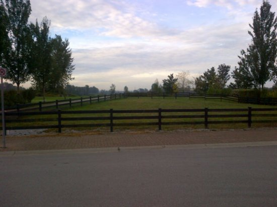 Pitt Meadows, Canada : view from cafe