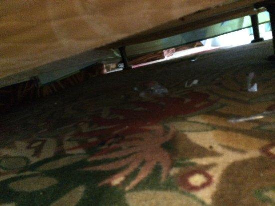 Disney's Art of Animation Resort: under our bed. yuck!