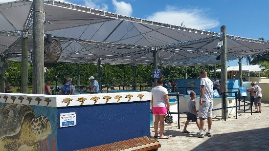 Juno Beach, FL: 20160917_110934_large.jpg