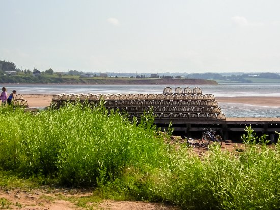 North Rustico Lighthouse: Lobster Traps Nearby
