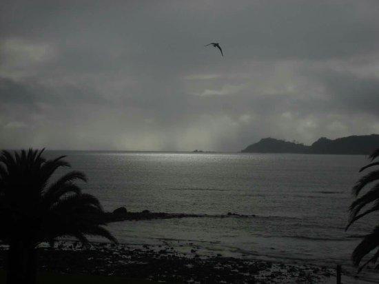 Waitangi, Nueva Zelanda: FB_IMG_1474159732358_large.jpg