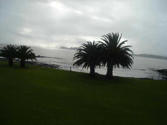 Waitangi, Nueva Zelanda: FB_IMG_1474159728072_large.jpg