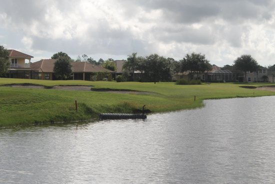 Palm Bay, FL: BIG water holes