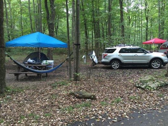 Ohiopyle, Пенсильвания: Amazing campground