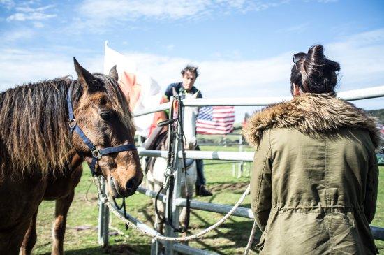 Pulau Waiheke, Selandia Baru: Steve showing us a few tips before we get on the horses