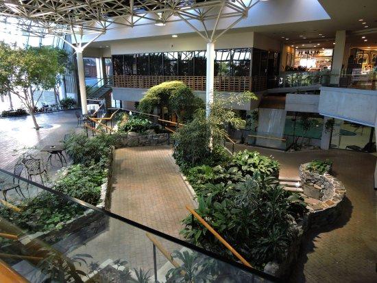magnifique jardin int rieur picture of sheraton hotel newfoundland st john 39 s tripadvisor. Black Bedroom Furniture Sets. Home Design Ideas
