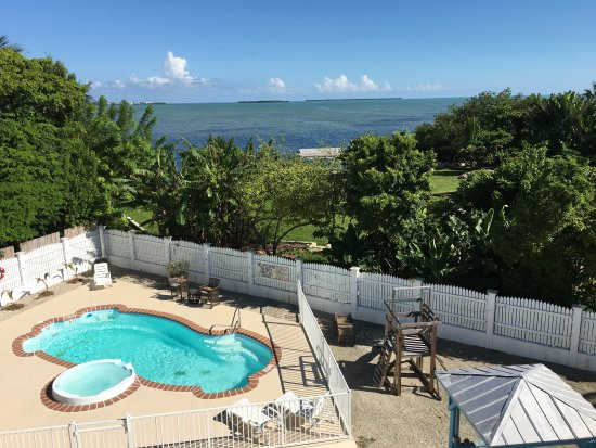 Cudjoe Key, FL: Pool with the Ocean view