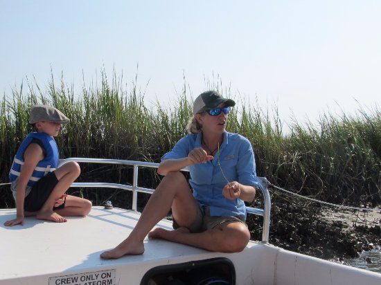 Folly Beach, SC: Capt. Weatherly telling us about the marsh grass.