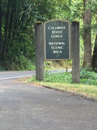 Columbia River Gorge 사진