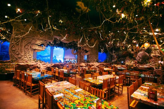 Rainforest Cafe Menu At Disney Springs