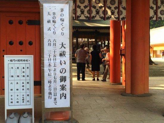 Musashi Ichinomiya Hikawa Shrine : 茅の輪くぐり 案内