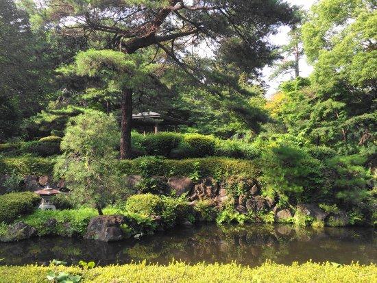 Musashi Ichinomiya Hikawa Shrine : 境内3