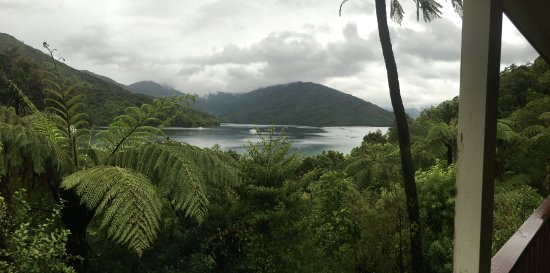 Endeavour Inlet, Nueva Zelanda: view from the room