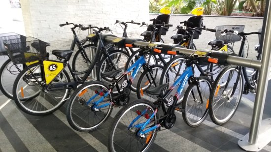 Spinway Gold Coast Bike Hire