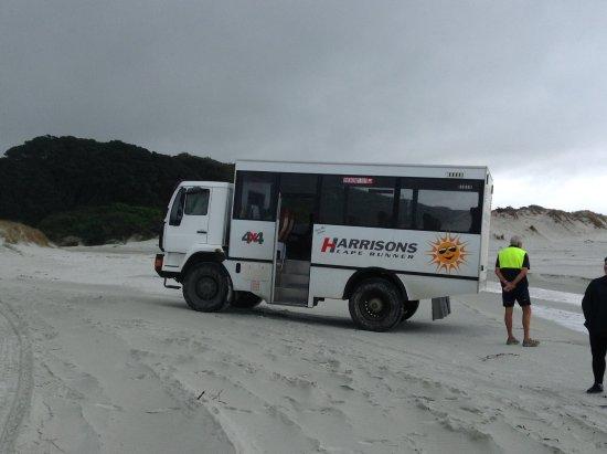 Kaitaia, Nova Zelândia: our cape runner bus and driver